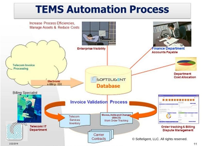 TEM automation process